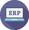 Business Software and ERP Implementation Services